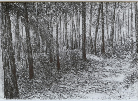 Woodland Trail by Alan Mast