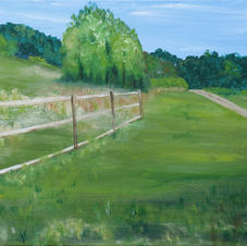 Fences, Penneville by Barbara Snapp