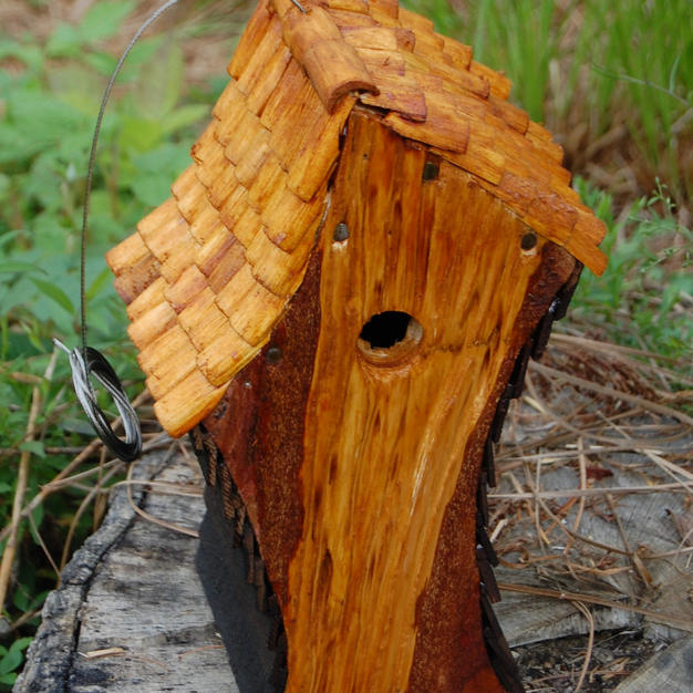 Birdhouse by Louis Caruso