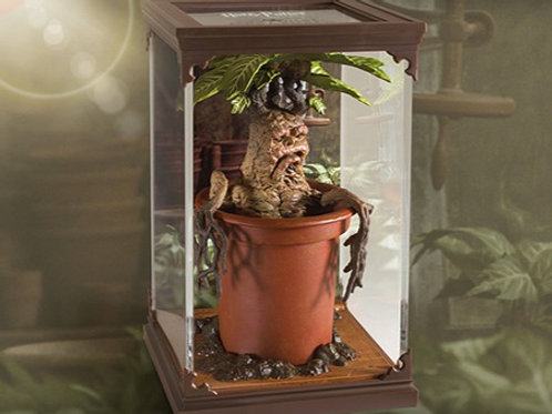Magical Creatures – Mandrake