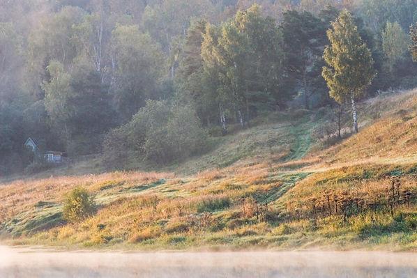 Авторская фотография для интерьера, пейзаж, природа, цвет