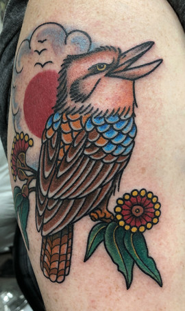 kookaburra tattoo.jpg