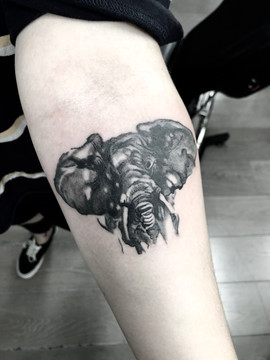 elephant tattoo.JPG