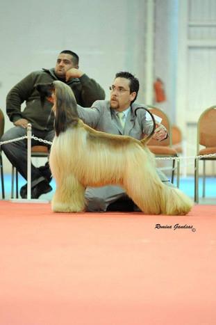 Agustin Farias Handler9