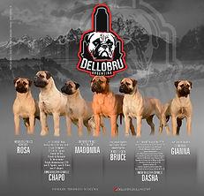 Criadero-Dellobru-Argentina-11.jpg