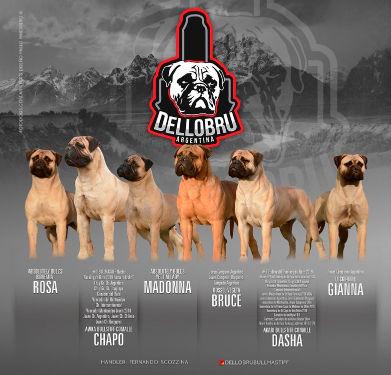 Criadero Dellobru-Argentina