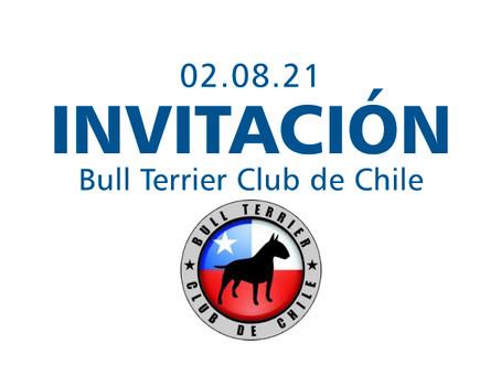 Bull Terrier Club de Chile