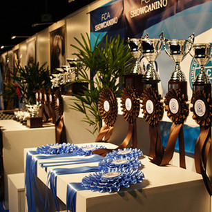 Final-de-Ranking-2013-FCA-21.jpg