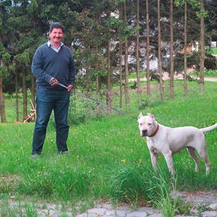 Austria-Perros-en-Acción-5.jpg