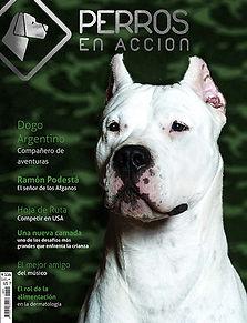 Ravista Nº 15 Perros en Acción
