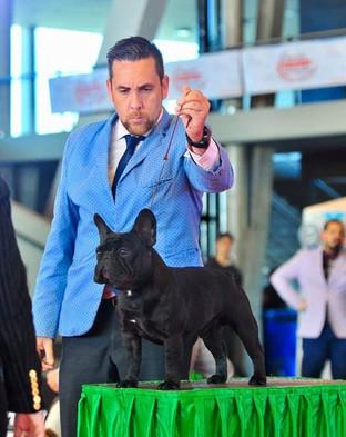 Agustin Farias Handler2