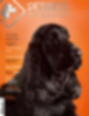 Tapa Revista Perros en Acción