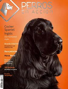 Ravista Nº 3 Perros en Acción