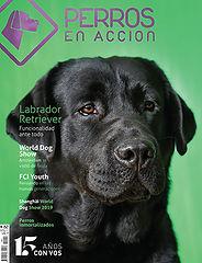 Ravista Nº 11 Perros en Acción