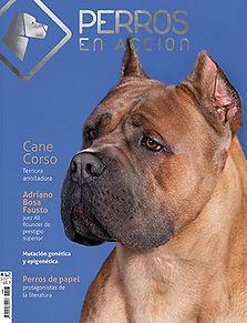 Ravista Nº 8 Perros en Acción