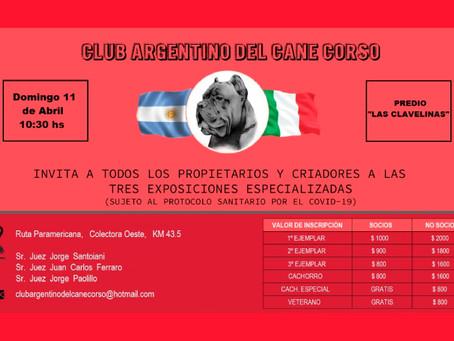 Club Argentino del Cane Corso