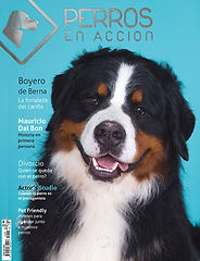 Ravista Nº 5 Perros en Acción