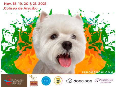 FCI Puerto Rico International Dog Show 2021.
