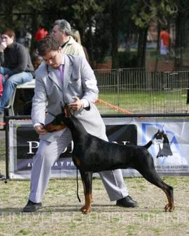 Jorge-Vera-handler-10.jpg