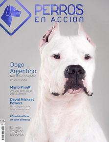 Ravista Nº 9 Perros en Acción