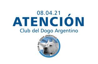 Club del Dogo Argentino