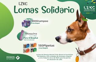Lomas de Zamora Solidario