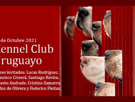 Kennel Club Uruguayo