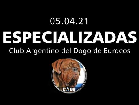Club Argentino del Dogo de Burdeos
