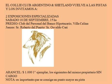 Collie Club Argentino & Shetland