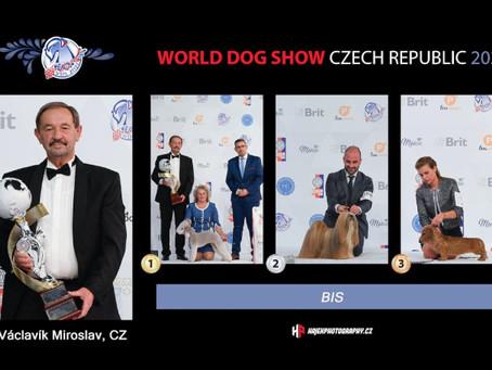 Word Dog Show 2021