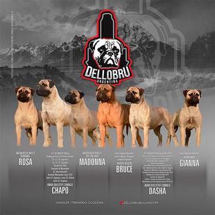 Criadero-Dellobru-Argentina-06.jpg