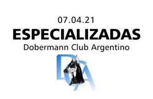 Dobermann Club Argentino