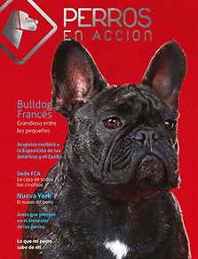 Ravista Nº 12 Perros en Acción