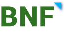 BNF Consulting Logo