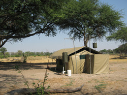Camp in the busch
