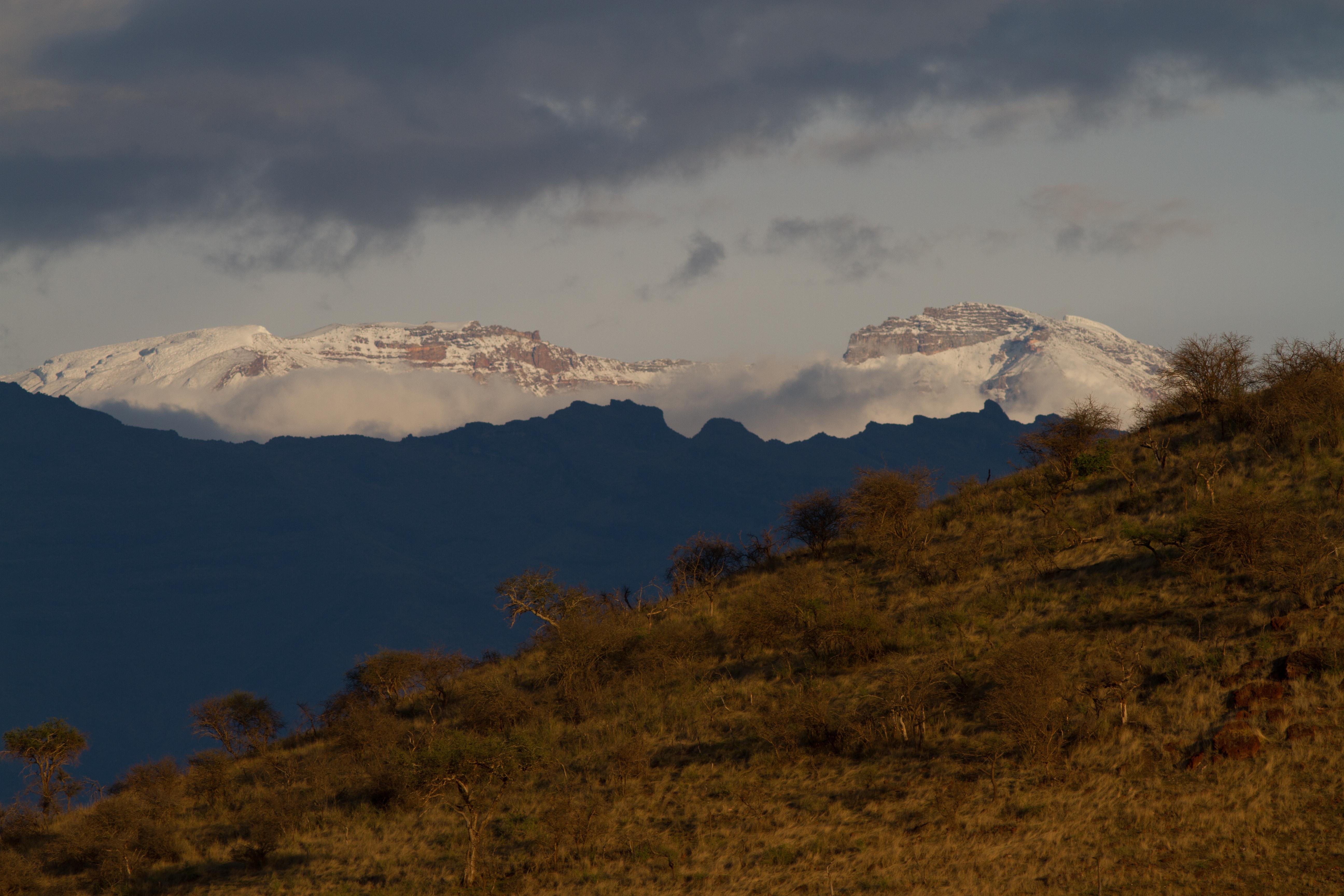 Kilimanjaro from Shira plateau