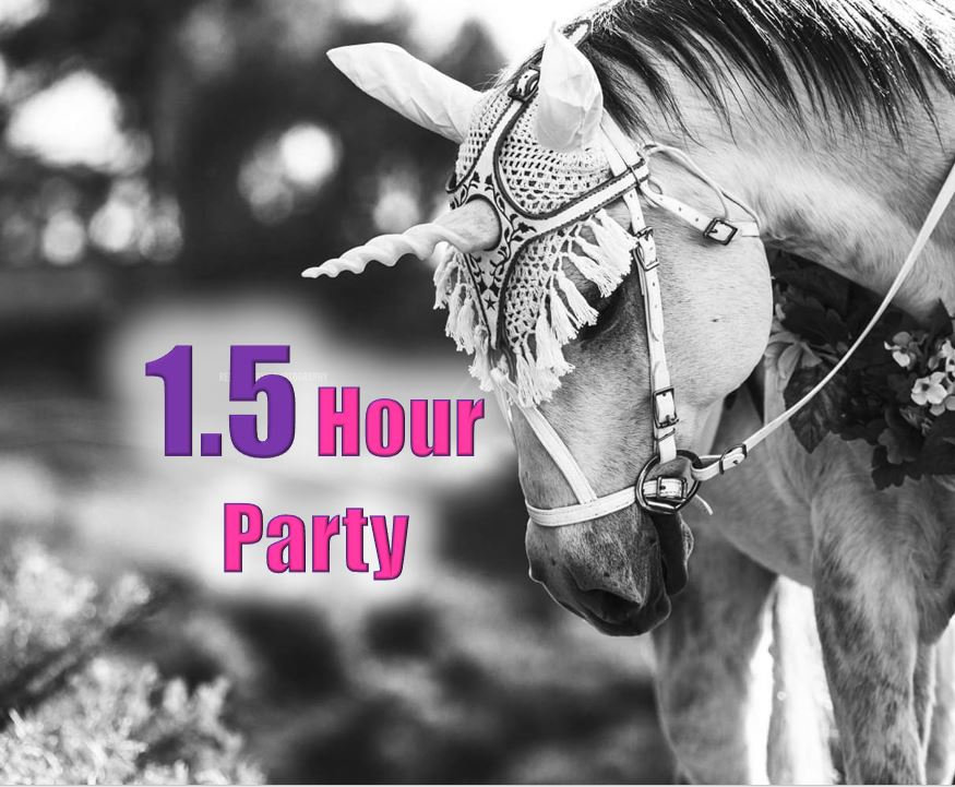 In Person Unicorn Party (1.5 hr)
