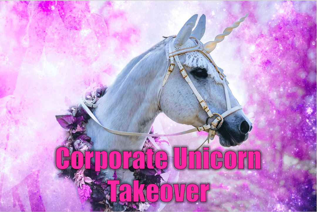 Unicorn Online Corporate Zoom Call