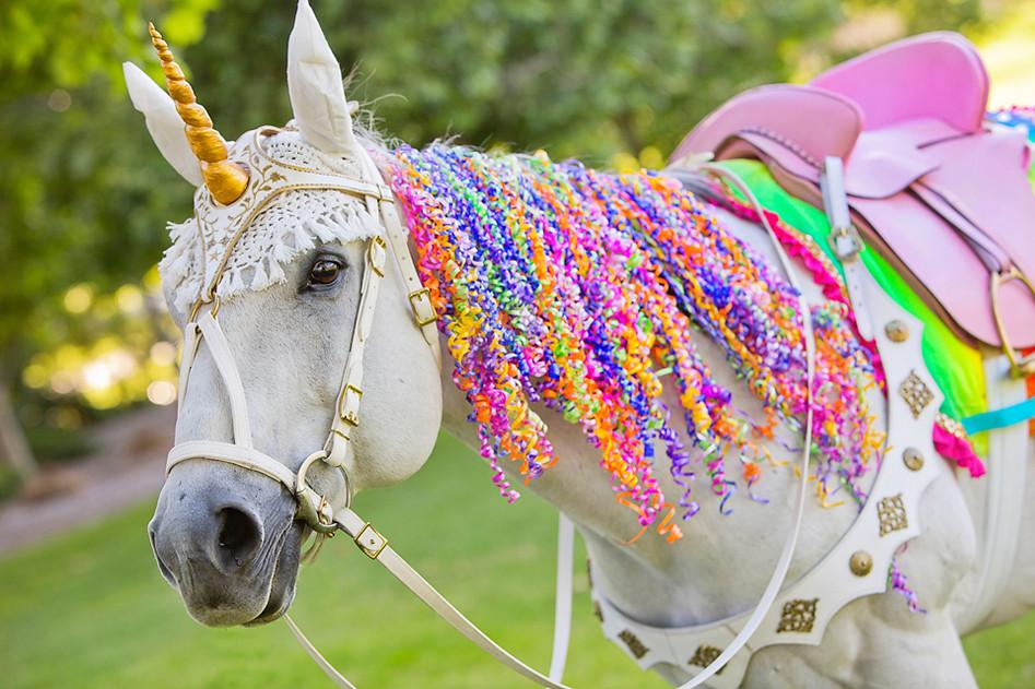 Milo the Unicorn-Gold Unicorn Horn Los Angeles Party.JPG