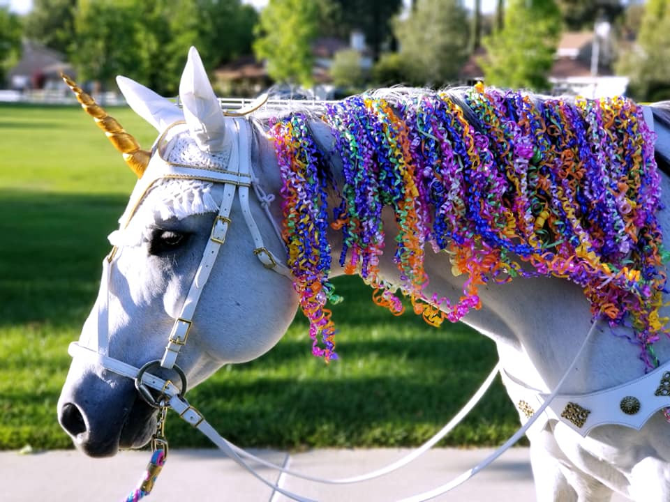 Milo the Magical Unicorn- Rainbow Party .jpg