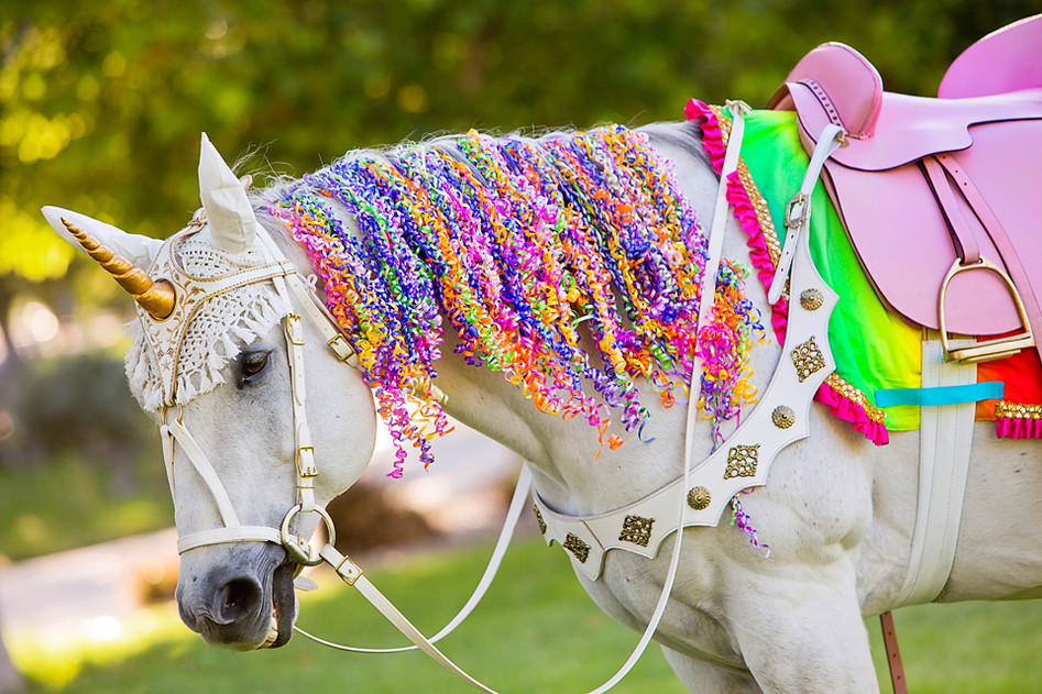 Milo the Unicorn - Sheroes Entertainment Colorful Ribbon Horse Mane.JPG