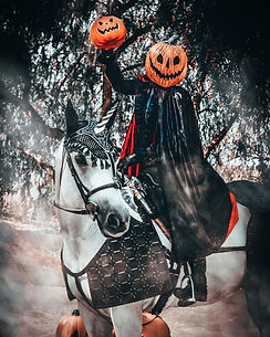 Headless Horseman on Horse Photo - Los A