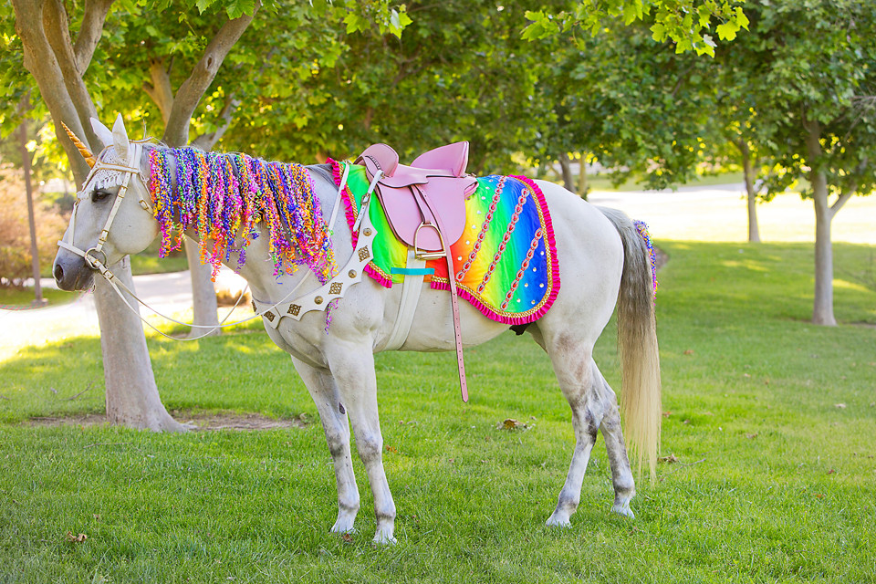 Milo the Unicorn - Los Angeles Rainbow Unicorn Horse for Party.JPG