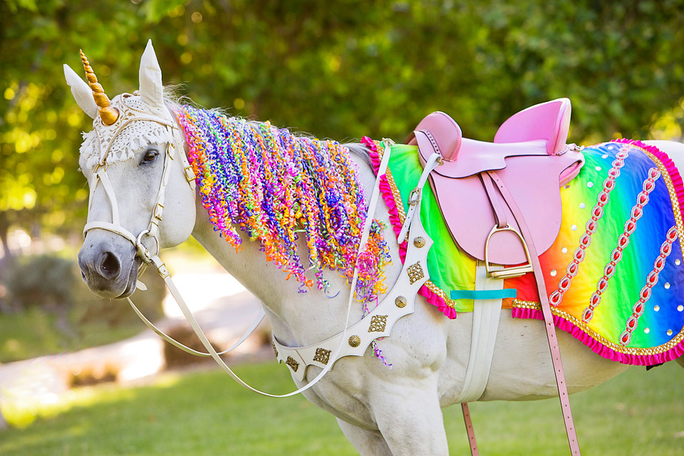 Milo the Unicorn-Neon Rainbow Pride Costume.JPG