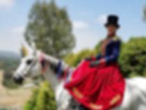 American Unicorn.jpg