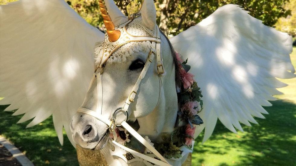 Horse Pegasus Costume - Milo the Unicorn