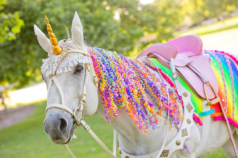 Milo the Unicorn - Neon Rainbow Unicorn Party .JPG