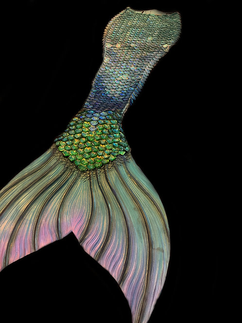 Blue and Green Scale Tail