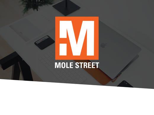 MOLE STREET AGENCY