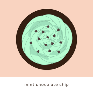 mint chocolate chip.png